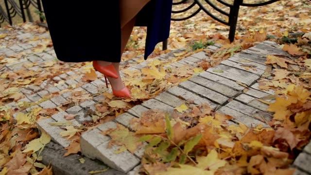 Elegant businesswoman climbing stairs in autumn video