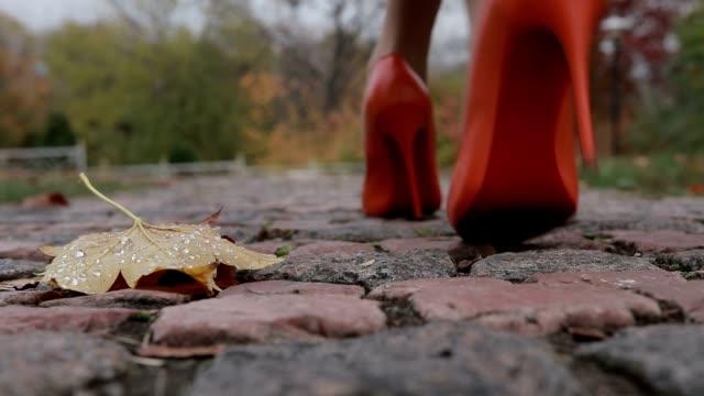 Elegant female legs walking away in autumn park video