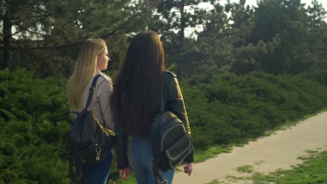 eleganta flickor strosa i parken vid solnedgången - flickvän bildbanksvideor och videomaterial från bakom kulisserna