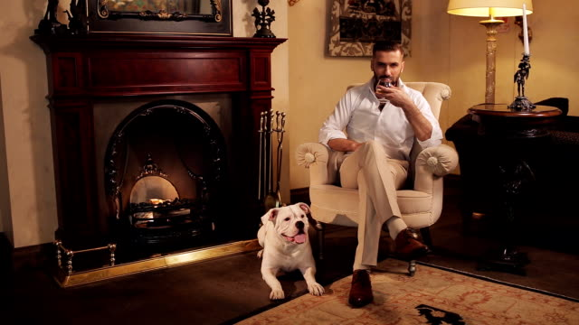 Elegant man with glasses sitting in a chair by the fireplace. The comfort of home. Evening by the fireplace with a faithful dog. The man in the armchair by the fireplace drinking whiskey and petting his dog. wealth stock videos & royalty-free footage