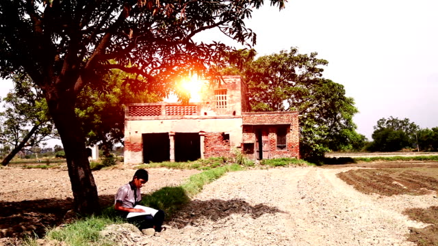 Elementary age school child studying outdoor in nature. Elementary age school child studying outdoor in nature wearing school uniform during sunrise. haryana stock videos & royalty-free footage