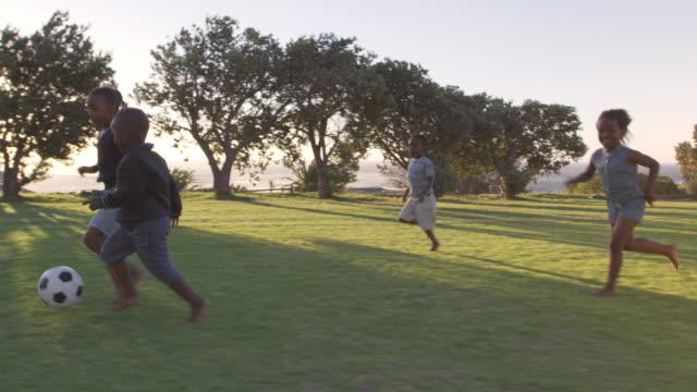 elementary school kids playing football in a field - preadolescente video stock e b–roll