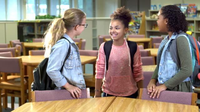 grundskole studenter i biblioteket - endast flickor bildbanksvideor och videomaterial från bakom kulisserna