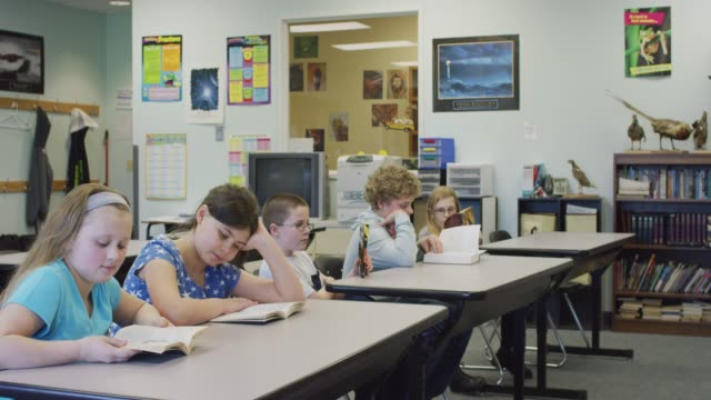 Elementary Students Reading at Their Desks video