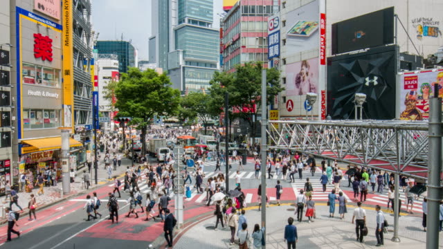 Elevated view of people crossing in the streets of Tokyo video