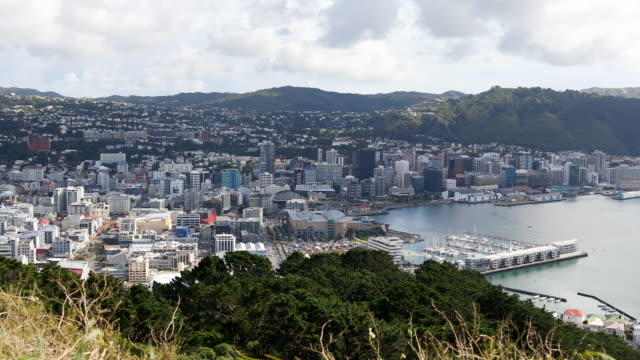 Elevated View Overlooking Wellington New Zealand video