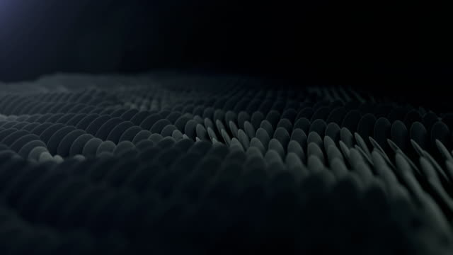Ellipse Particles (Dark) - loopable
