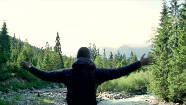 vídeos de stock e filmes b-roll de embracing nature - man enjoying view with opened arms - man admires forest