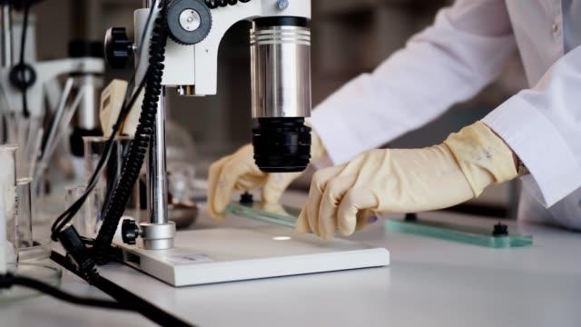 employee puts slide to microscope to check product quality - mikrobiologia filmów i materiałów b-roll