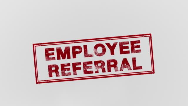 employee referral - bonus video stock e b–roll