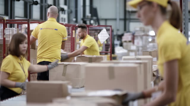LD Employees in the warehouse scanning and sorting packages from the conveyor belt video