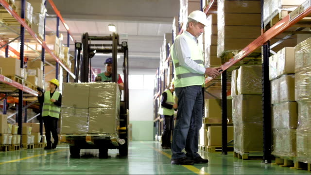 Employees Working In The Warehouse video