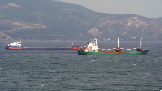 Empty anchored cargo ships moored in bay.