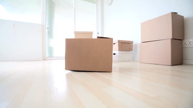 Empty apartment with moving boxes video