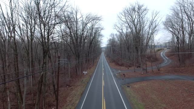 Empty back country road on cloudy day tree top flyover video