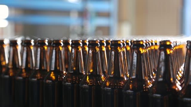Empty beer glass bottles on the conveyor belt video