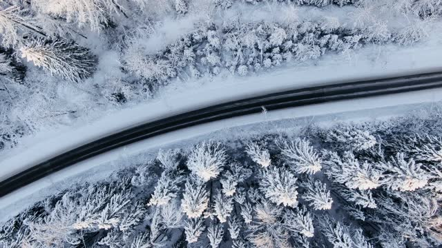 Empty black highway across tranquil snowy winter forest