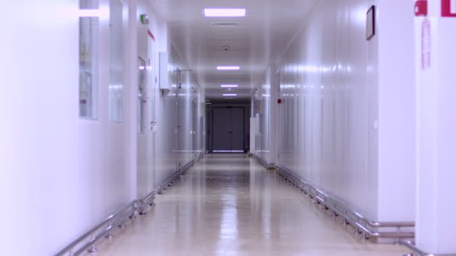 empty hospital corridor interior. empty hallway hospital. clinic corridor - entrata video stock e b–roll