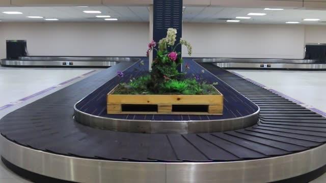공항의 빈 수하물 클레임 라인 - 공항 스톡 비디오 및 b-롤 화면