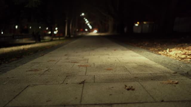秋の夜にランタンで照らされた川の堤防に沿って空の舗装された歩道 - 土手点の映像素材/bロール