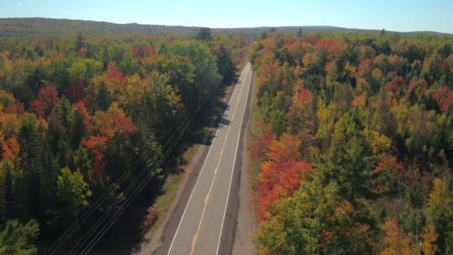vídeos de stock e filmes b-roll de aerial empty road leading trough beautiful colorful autumn forest in sunny fall - passagem de ano