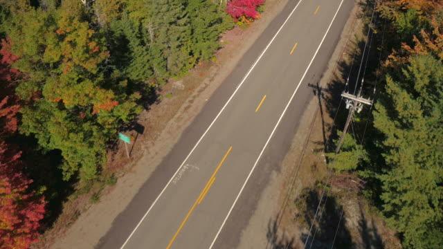 vídeos de stock e filmes b-roll de aerial: empty road leading trough stunning colorful autumn forest in sunny fall - passagem de ano