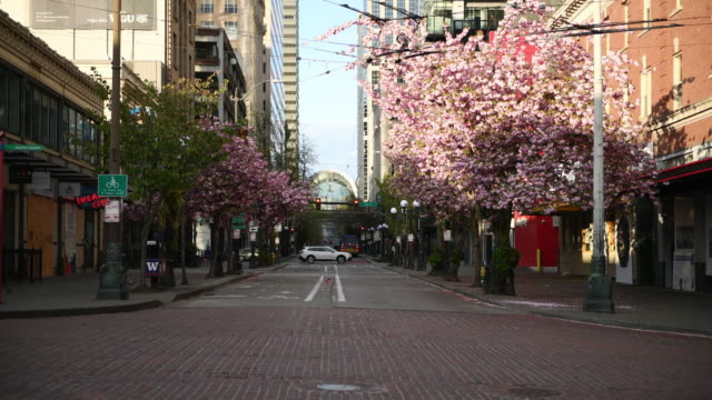 Empty Seattle The virtual empty street in downtown at 6:00pm on a Saturday during the Covid-19 Stay at Home order. seattle stock videos & royalty-free footage
