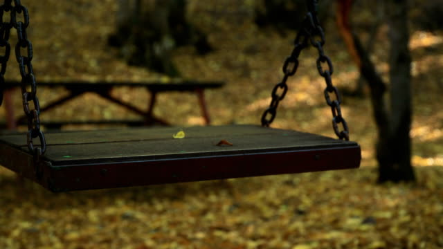 Empty swing in autumn