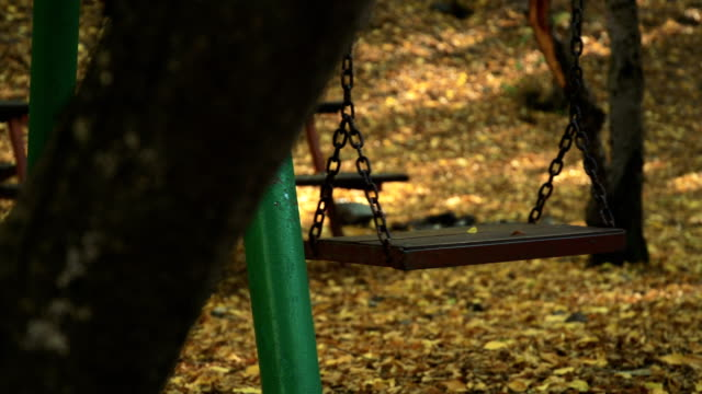 Empty swing in forest