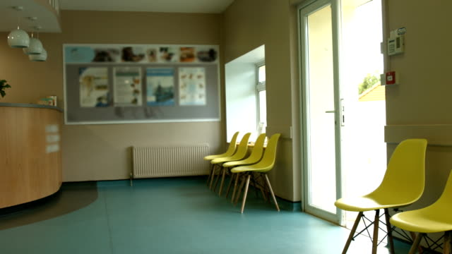 Empty vet waiting room video