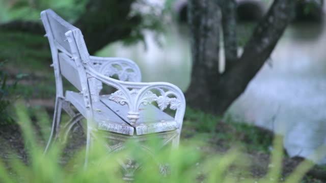 Empty white bench in garden video