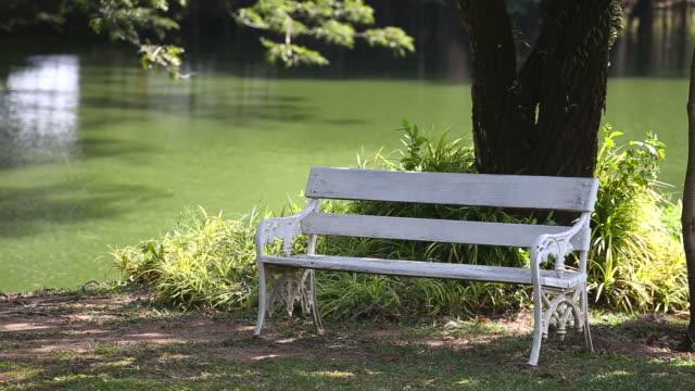 Empty white bench in garden