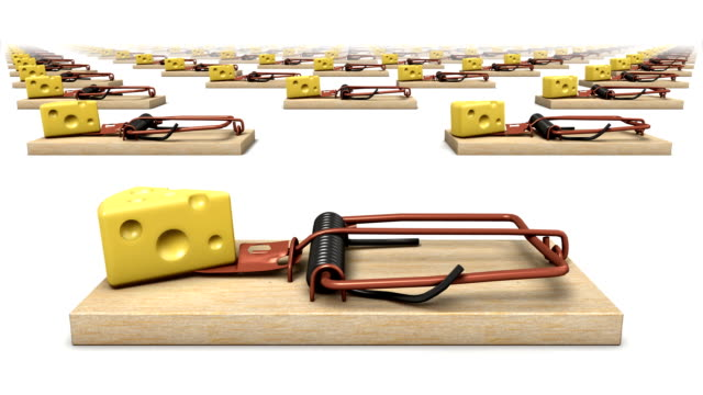 Endless Mouse Traps front view loop video