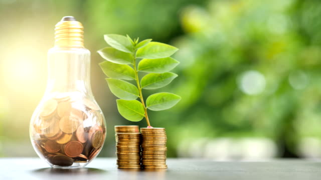 Energy saving. stacks of coins growing in light bulb and tree growing on stacks of coins and Motion tree nature background. Saving, Natural energy and financial concept. video 4K Slow motion