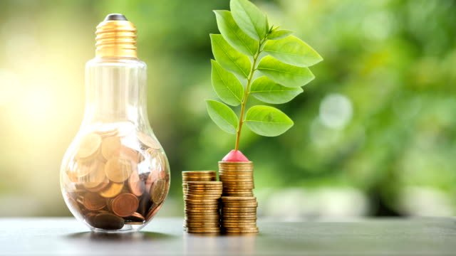 Energy saving. stacks of coins growing in light bulb and tree growing on stacks of coins and Motion tree nature background. Saving, Natural energy and financial concept. video 4K Slow motion video