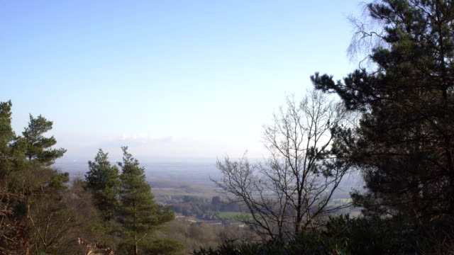 englische landschaft in der nähe von london. zeitigen frühjahr buchenholz. kopieren sie weltraum hintergrund. wunderbare aussicht auf das tal durch die fichte mit blauem himmel und wolken - baumgruppe stock-videos und b-roll-filmmaterial
