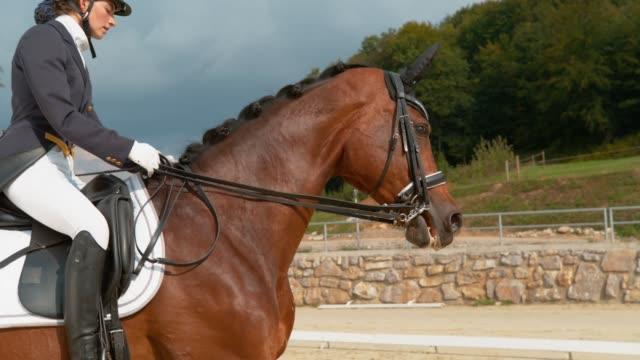 super slow motion: engelska rider i en blå klänning galopperar på manege på hästryggen. - häst tävling bildbanksvideor och videomaterial från bakom kulisserna