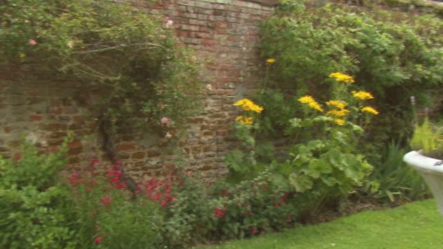 englische rose garden - landhaus stock-videos und b-roll-filmmaterial