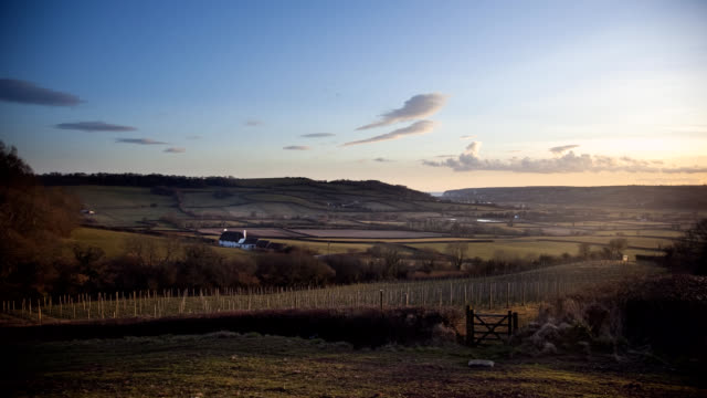 English vineyard hills and sea Timelapse WS video