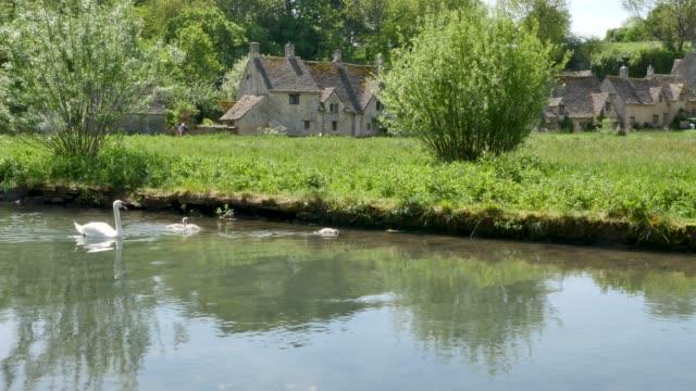 englische weber hütten in arlington reihe im dorf mit schwimmenden schwänen - landhaus stock-videos und b-roll-filmmaterial