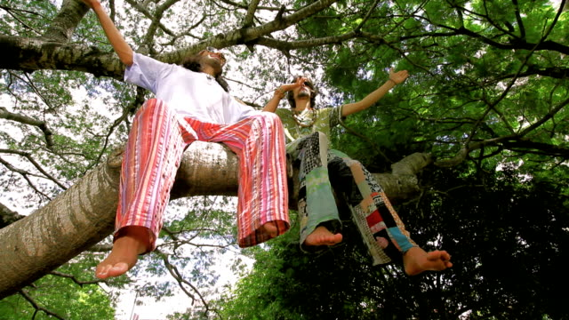Enjoying nature Two friends, hippie style dressed, sitting on a tree worshipping the nature. Low wide angle shot. hippie stock videos & royalty-free footage