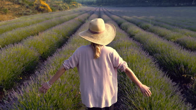 Enjoying nature. Woman in blooming lavender video