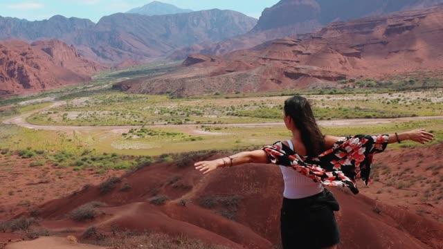 アルゼンチンの美しい田園地帯を楽しむ - 日常から抜け出す点の映像素材/bロール