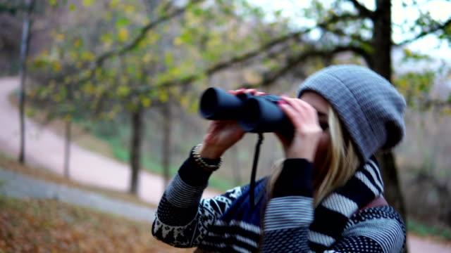 njuter av skogsmark - bergsrygg bildbanksvideor och videomaterial från bakom kulisserna