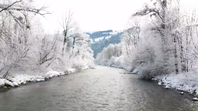 ennstal, styria, avusturya kış aylarında enns nehri - styria stok videoları ve detay görüntü çekimi