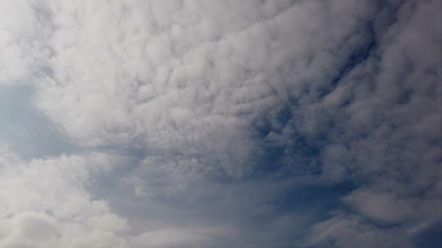 vídeos de stock, filmes e b-roll de enveloping lapso de tempo de bancos de cirrocumuli nuvens brancas soprando com sombras e cruza uns aos outros com efeito de vento e atmosfera de beleza - cirro