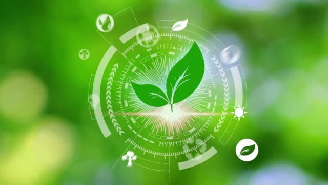 vídeos de stock, filmes e b-roll de ícones do ambiente sobre a conexão de rede no fundo da natureza - preservação ambiental