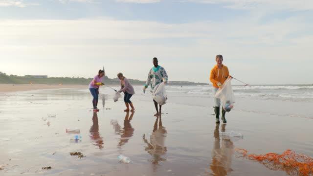 Environmental Beach Cleanup