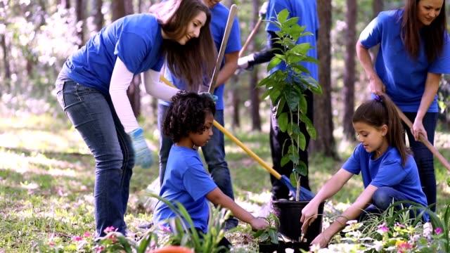 Umweltverschönerung. Ehrenamtliche pflanzen im Frühjahr Blumen, Baum, Pflanzen im Park. – Video