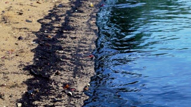 vídeos y material grabado en eventos de stock de desastre ambiental: derrame de petróleo se lava en la playa - contaminación ambiental